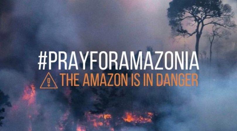 Frases De Los Incendios Del Amazonas Imagenes Hermosas